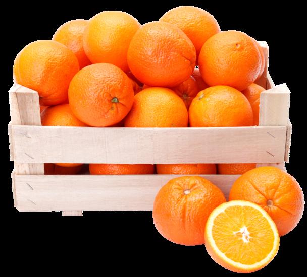 Perssinaasappels (Maat 105) 15KG