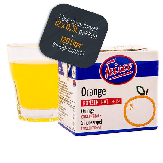 Frisco Sinaasappel 1+19